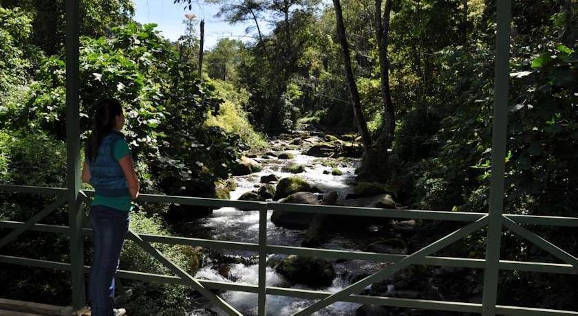 Suenos Del Bosque Lodge Angeles Iki 75 Nuolaida Viesbucio Costa Rica Viesbucių Rezervavimas Internetu