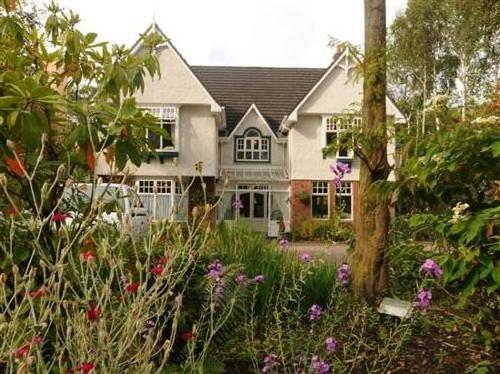 Fuchsia House Guesthouse