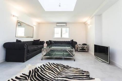 French Designer Apartment