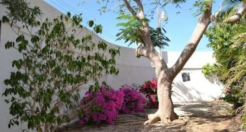 Guesthouse Aruba